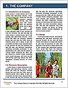 0000072784 Word Template - Page 3
