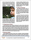0000072784 Word Template - Page 4