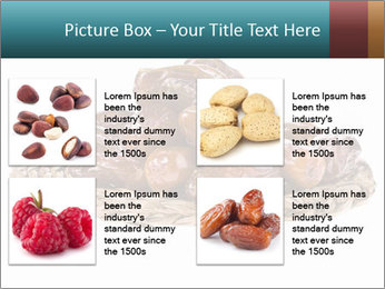 0000072788 PowerPoint Template - Slide 14