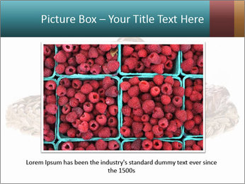 0000072788 PowerPoint Template - Slide 15