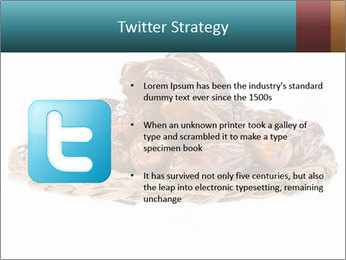 0000072788 PowerPoint Template - Slide 9