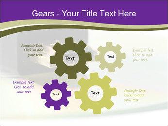 0000072798 PowerPoint Templates - Slide 47