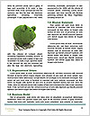 0000072808 Word Templates - Page 4