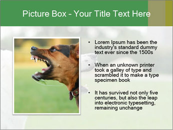 0000072819 PowerPoint Templates - Slide 13