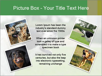 0000072819 PowerPoint Templates - Slide 24
