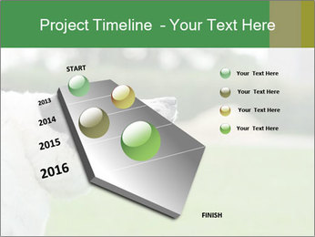 0000072819 PowerPoint Templates - Slide 26