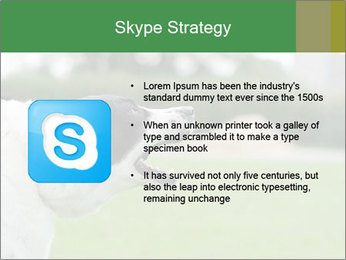 0000072819 PowerPoint Templates - Slide 8