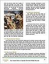 0000072819 Word Templates - Page 4