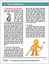 0000072822 Word Template - Page 3
