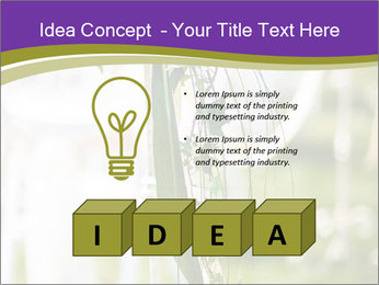 0000072824 PowerPoint Template - Slide 80