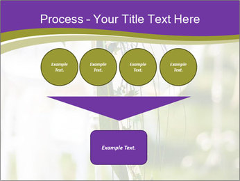 0000072824 PowerPoint Template - Slide 93