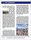 0000072829 Word Template - Page 3