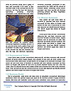 0000072829 Word Template - Page 4