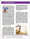 0000072835 Word Template - Page 3