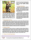 0000072835 Word Template - Page 4