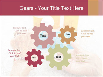 0000072836 PowerPoint Template - Slide 47