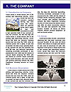 0000072840 Word Template - Page 3