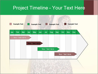 0000072842 PowerPoint Template - Slide 25