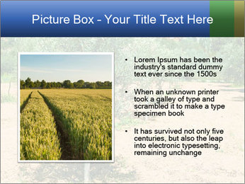 0000072843 PowerPoint Template - Slide 13