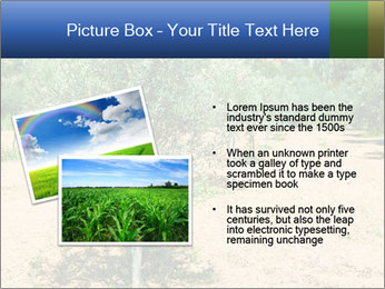 0000072843 PowerPoint Template - Slide 20