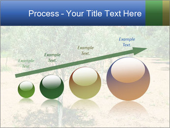 0000072843 PowerPoint Template - Slide 87