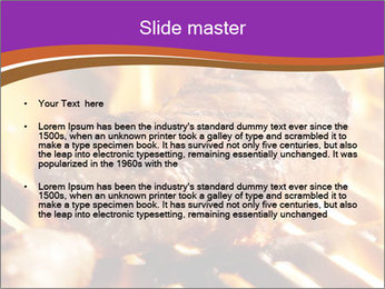 0000072844 PowerPoint Template - Slide 2