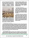 0000072851 Word Templates - Page 4