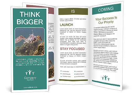 0000072852 Brochure Template