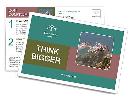 0000072852 Postcard Templates