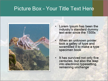 0000072852 PowerPoint Template - Slide 13