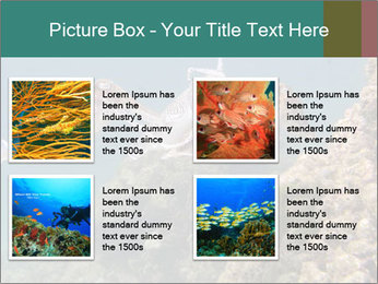 0000072852 PowerPoint Template - Slide 14