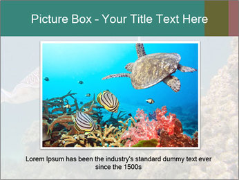 0000072852 PowerPoint Template - Slide 15