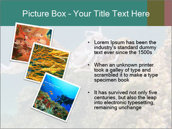 0000072852 PowerPoint Template - Slide 17
