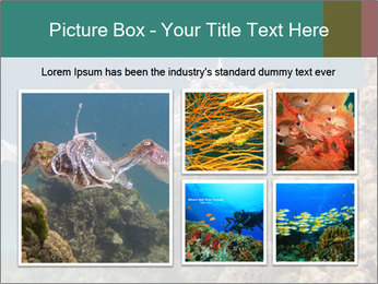 0000072852 PowerPoint Template - Slide 19