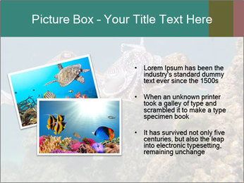 0000072852 PowerPoint Template - Slide 20
