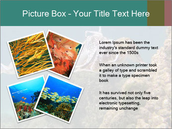 0000072852 PowerPoint Template - Slide 23
