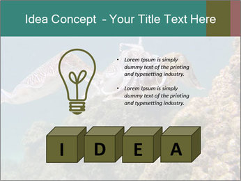0000072852 PowerPoint Template - Slide 80