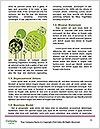 0000072854 Word Templates - Page 4