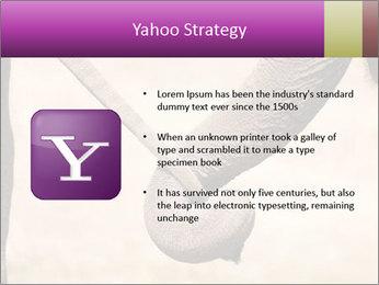 0000072856 PowerPoint Templates - Slide 11