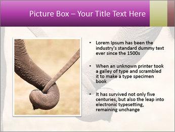 0000072856 PowerPoint Templates - Slide 13