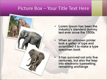 0000072856 PowerPoint Templates - Slide 17