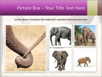 0000072856 PowerPoint Templates - Slide 19