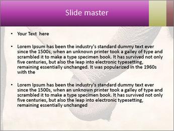 0000072856 PowerPoint Templates - Slide 2