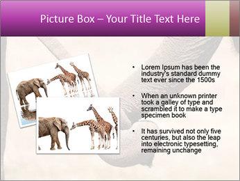 0000072856 PowerPoint Templates - Slide 20