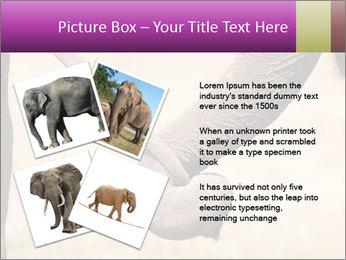 0000072856 PowerPoint Templates - Slide 23