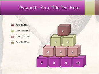 0000072856 PowerPoint Templates - Slide 31