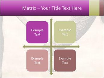 0000072856 PowerPoint Templates - Slide 37