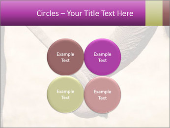 0000072856 PowerPoint Templates - Slide 38