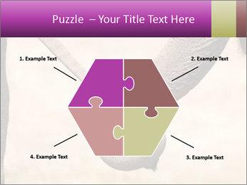 0000072856 PowerPoint Templates - Slide 40
