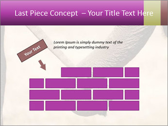 0000072856 PowerPoint Templates - Slide 46